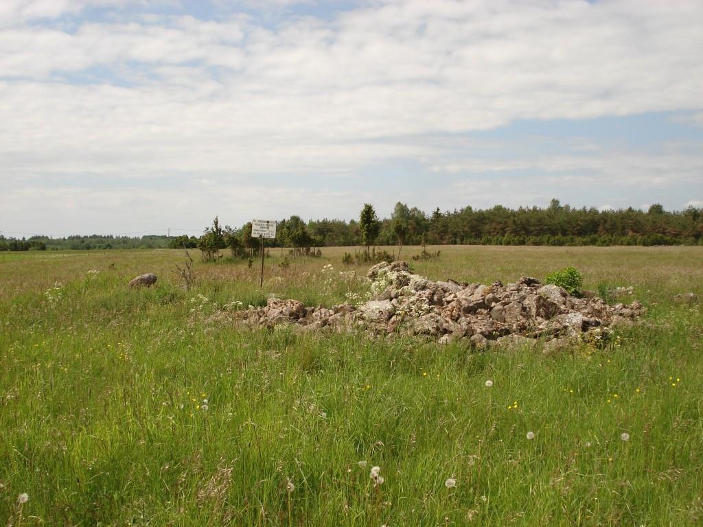 Vaade põllujäänustele lõunast. Foto: Karin Vimberg, 11.06.2009.