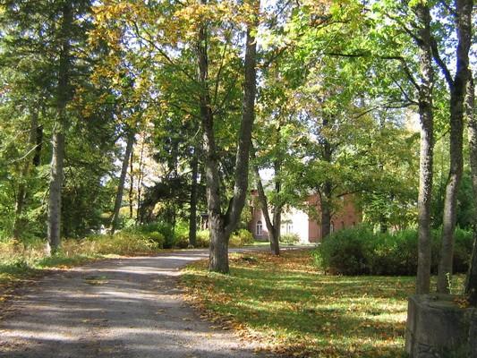 Veltsi mõisa park reg. nr. 15768, vaade kirdest, taamal peahoone. pilt Anne Kaldam 29.09.2009