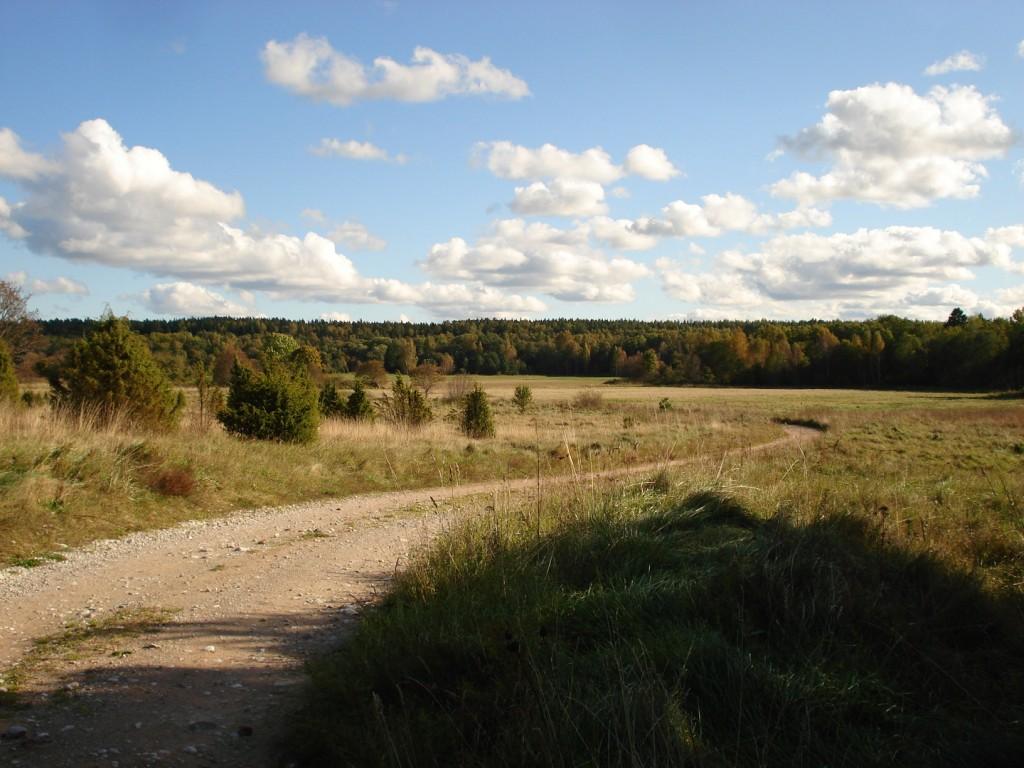 Vaade kiviaja asulakohale. Foto: Rita Peirumaa, 2008.