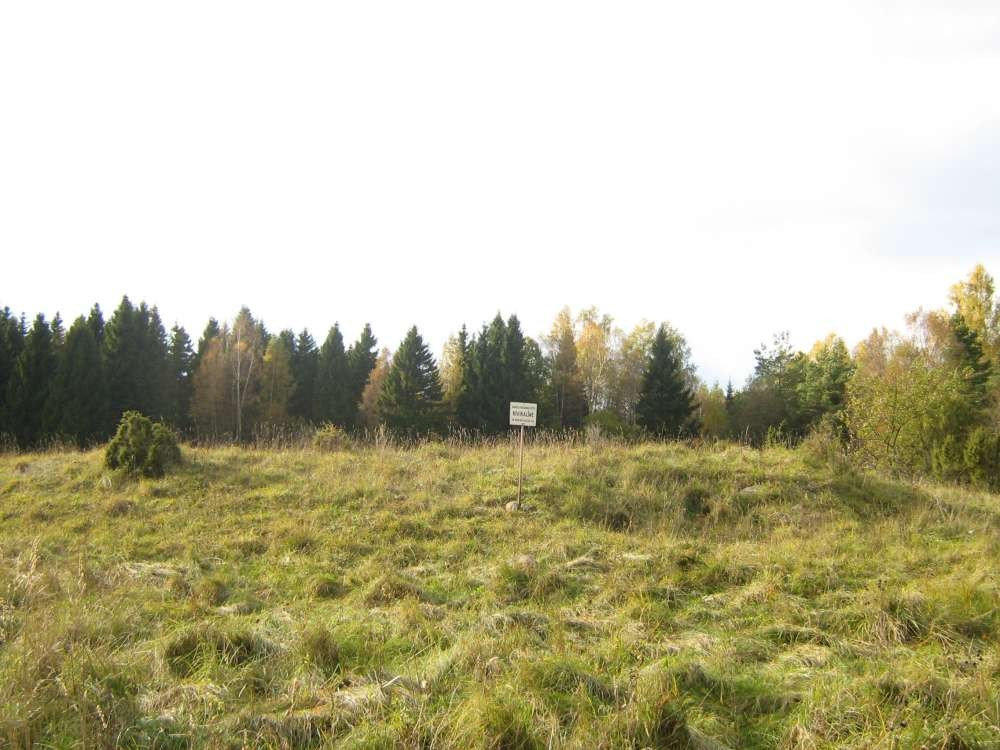Kivikalme. Foto: M. Koppel, 2009.