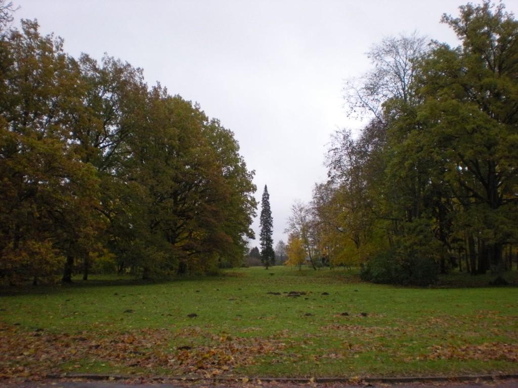 20.10.2009 P.Nork