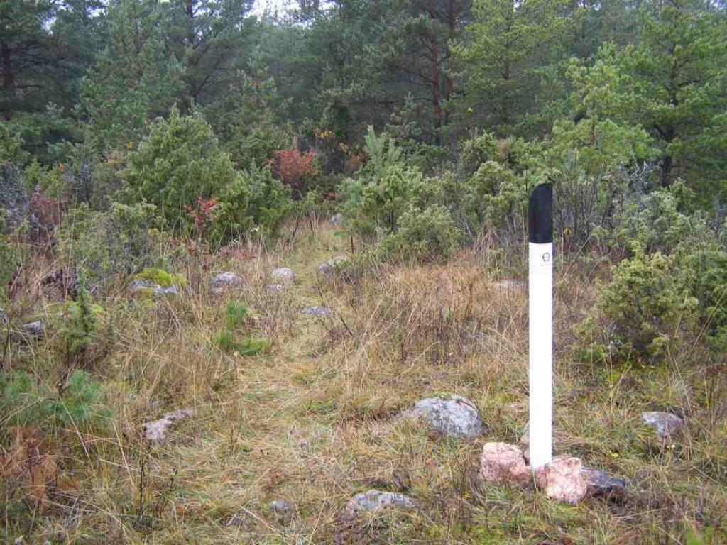 Muistsed põllud, Mätja küla. Foto: M. Koppel, 2009.