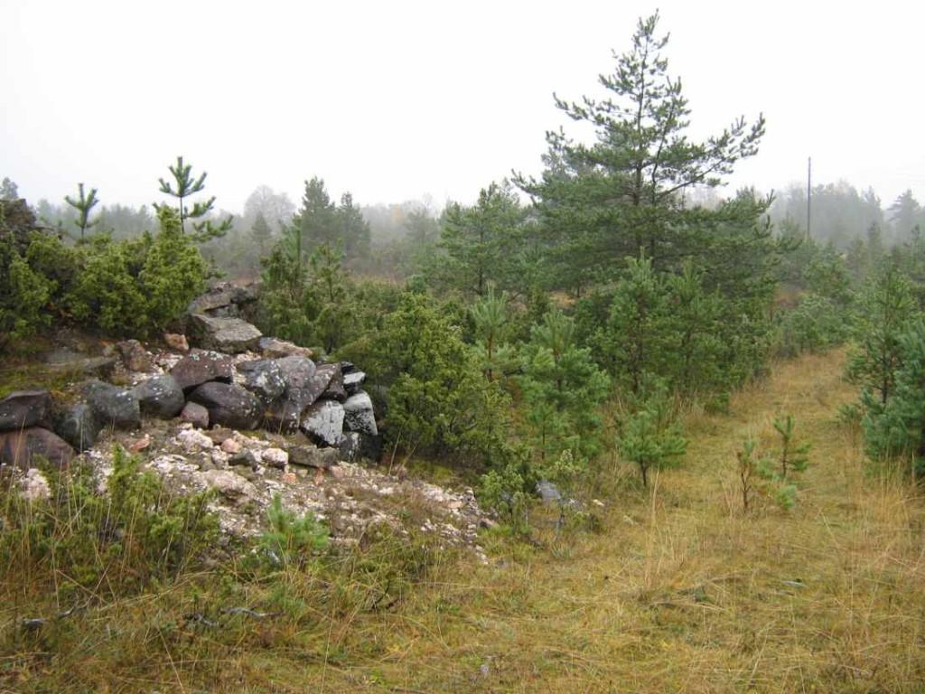 Vaade kõrgemalt künkalt põldudele lubjaahjuga (vasakul). Foto: M. Koppel, 2009.