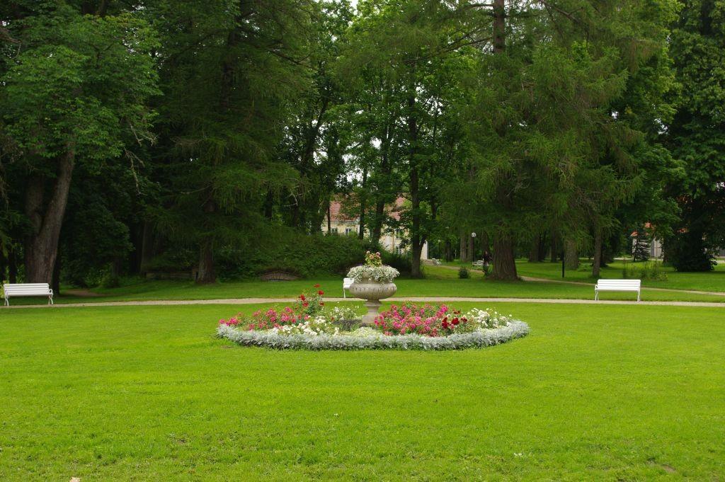 Peahoone esine lillepeenar 08.2009, Silja Konsa