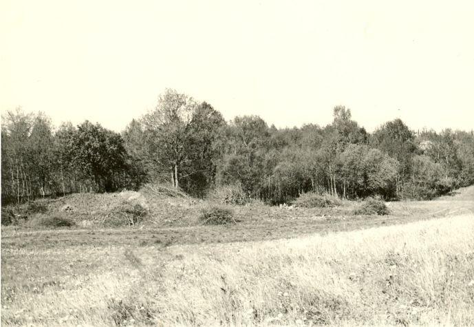 """""""Kabelimägi"""" idast. Foto: H. Joonuks, 1977."""