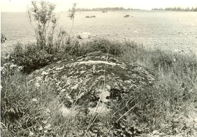 Lohukivi edelast. Foto: H. Joonuks, 1977.