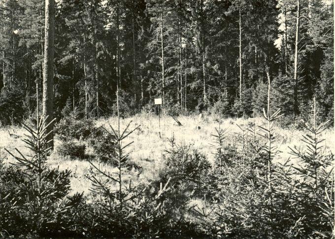 """""""Hauaplatsi põld"""" läänest. Foto: H. Joonuks, 1970."""