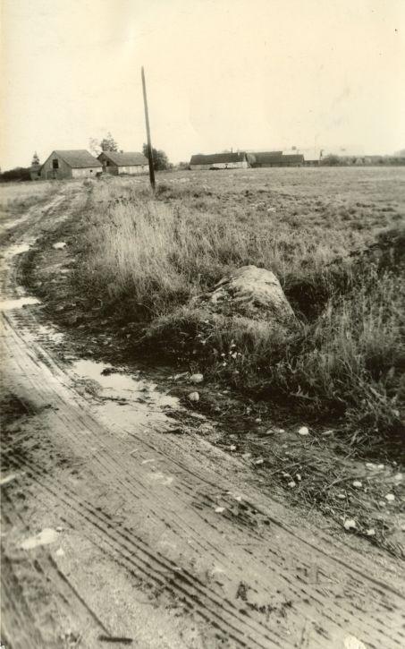 Ohvrikivi läänest. Foto: H. Joonuks, 1971.