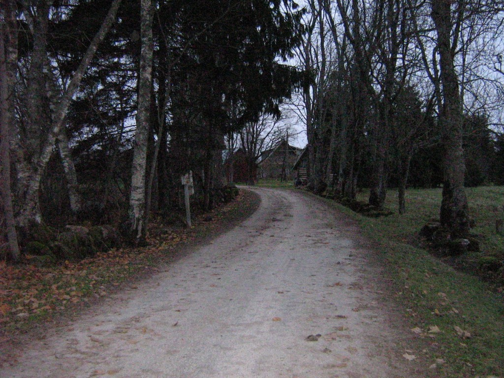 Maanteelt külla viiv tee lõunast. Foto: Kalli Pets, 04.11.2009.