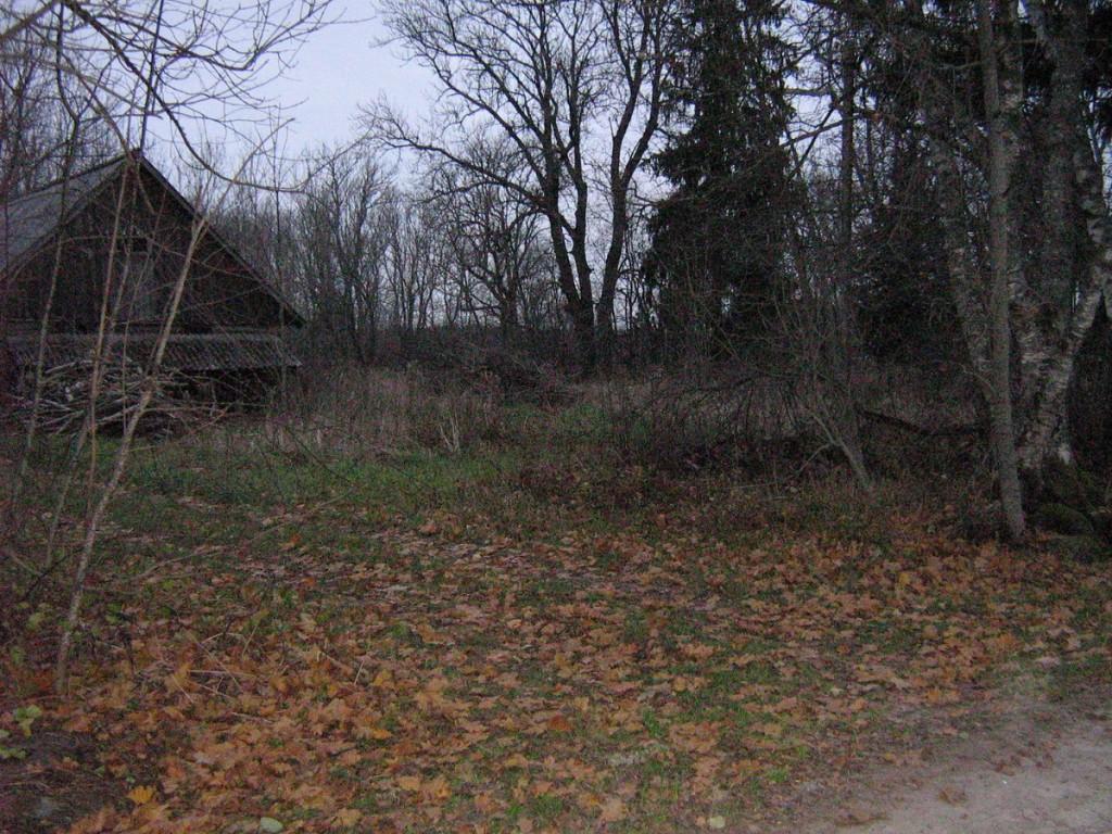Vaade Härmavilja talu poole. Foto: Kalli Pets, 04.11.2009.