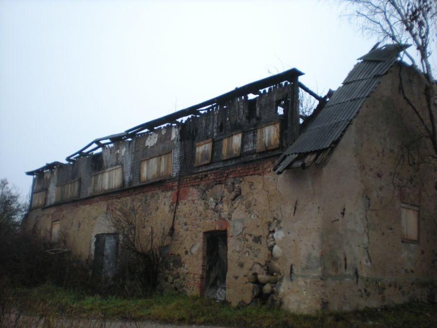 Reelika niit 04.12.2009
