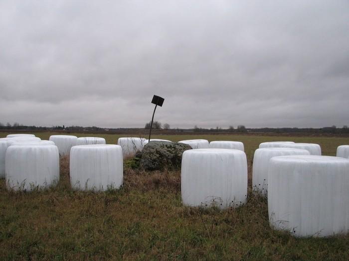 Lohukivi loodest. Foto: M. Abel, 03.12.2009.