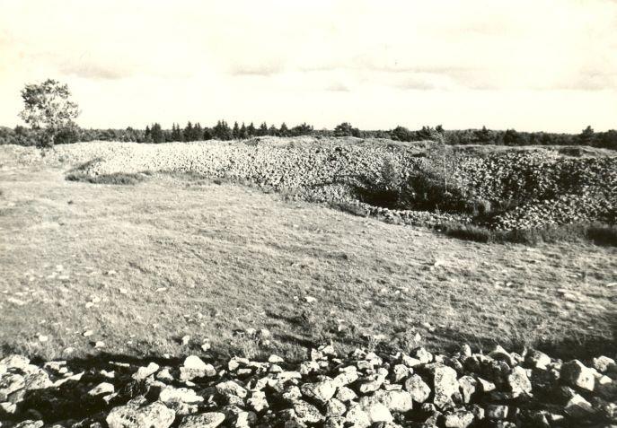 Maalinn. Foto: E. Väljal, 18.08.1981.