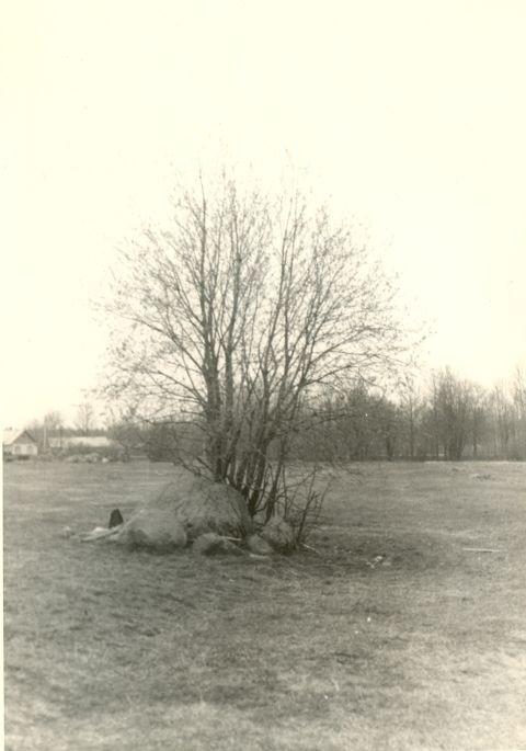 Lohukivi edelast. Foto: H. Joonuks, 1970-ndad.