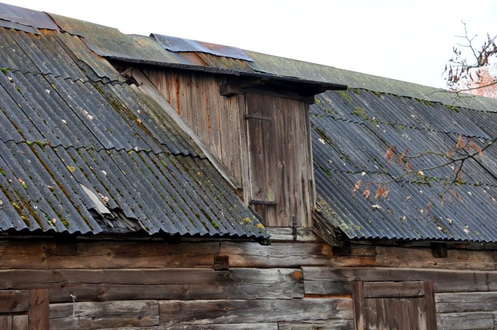 Loomalaut, vintskap Autor Tõnis Padu okt 2009