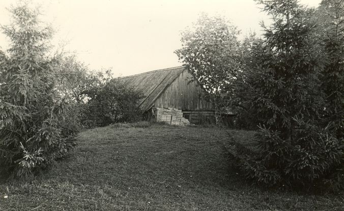Kivikalme - läänest. Foto: E. Väljal, 05.10.1982.