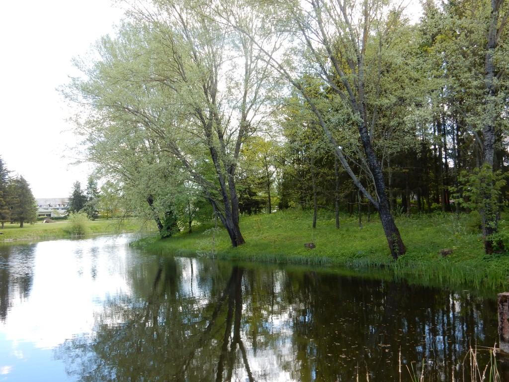 Rannu vasallilinnuse territoorium, 15.-16. saj. Foto autor I. Raudvassar 29.05.2020.