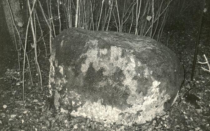 Kultusekivi - lõunast. Foto: E. Väljal, 05.10.1980ndad aastad.