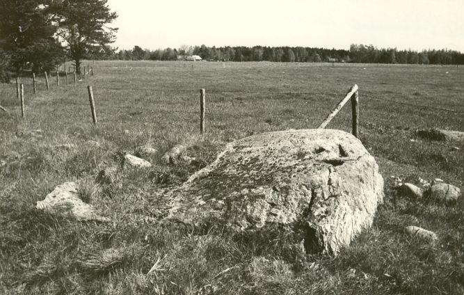 Rahvapärimustega seotud kivi reg nr 12667 (250-k) - loodest. Foto: E. Väljal, 1980ndad.