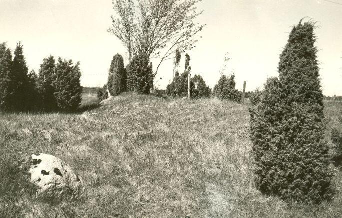 Kivikalme reg nr 12665 (746) - lõunast. Foto: E. Väljal, 21.05.1985.