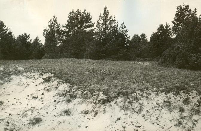 Maa-alune kalmistu reg nr 12648 (751) - kagust. Foto: E. Väljal, 1984. (Muinsuskaitseameti arhiiv).