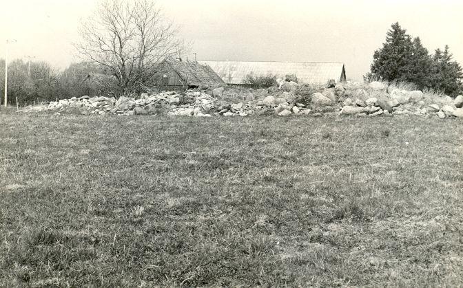 Kivikalme reg nr 12641 (730) - kagust. Foto: E. Väljal, 10.05.1982. (Muinsuskaitseameti arhiiv).