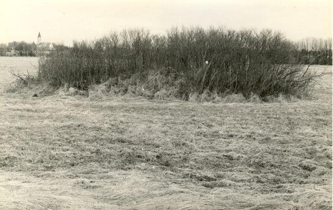 Kivikalme - lõunast. Foto: E. Väljal, 27.04.1982. (Muinsuskaitseameti arhiiv).