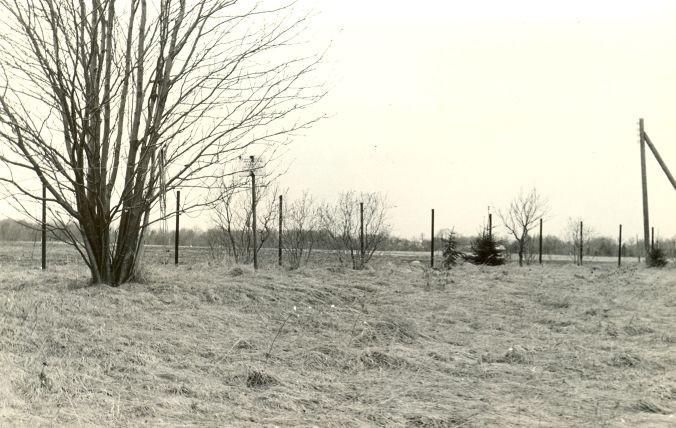 Maa-alune kalmistu - idast. Foto: E. Väljal, 1982. (Muinsuskaitseameti arhiiv).