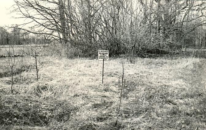 Maa-alune kalmistu - kagust. Foto: E. Väljal, 1985.