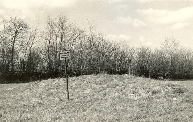 Kivikalme reg nr 12580 (2508) - lõunast. Foto: E. Väljal, 10.05.198..