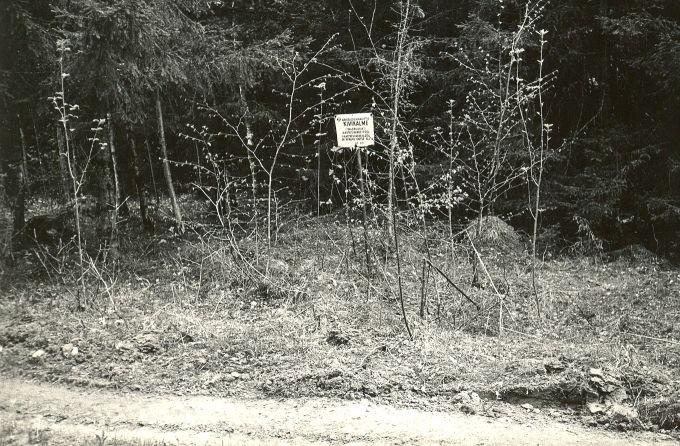 Kivikalme reg nr 12471- põhjast. Foto: E. Väljal, 15.05.1984. (Muinsuskaitseameti arhiiv).