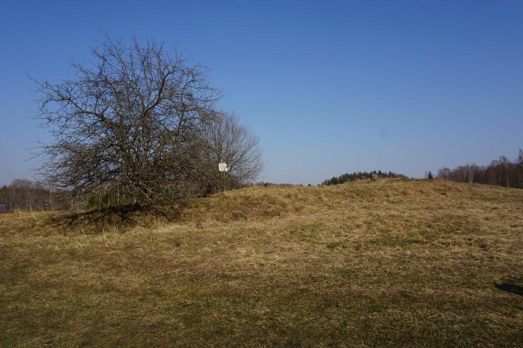 Kalmistu vaatega edelast. Foto M. Sein 07.04.2020