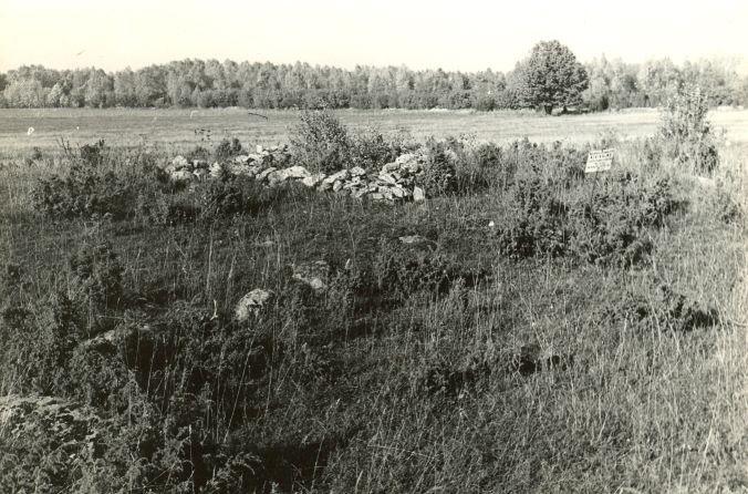 Kivikalme reg nr 12683 (201-k) - lõunast. Foto: E. Väljal, 06.10.1982. (Muinsuskaitseameti arhiiv).