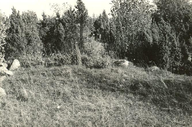 Kivikalme reg nr 12696 (214-k) - läänest. Foto: E. Väljal, 06.10.1982. (Muinsuskaitseameti arhiiv).