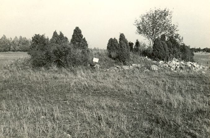 Kivikalme reg nr 12698 (216-k) - edelast. Foto: E. Väljal, 06.10.1982. (Muinsuskaitseameti arhiiv).