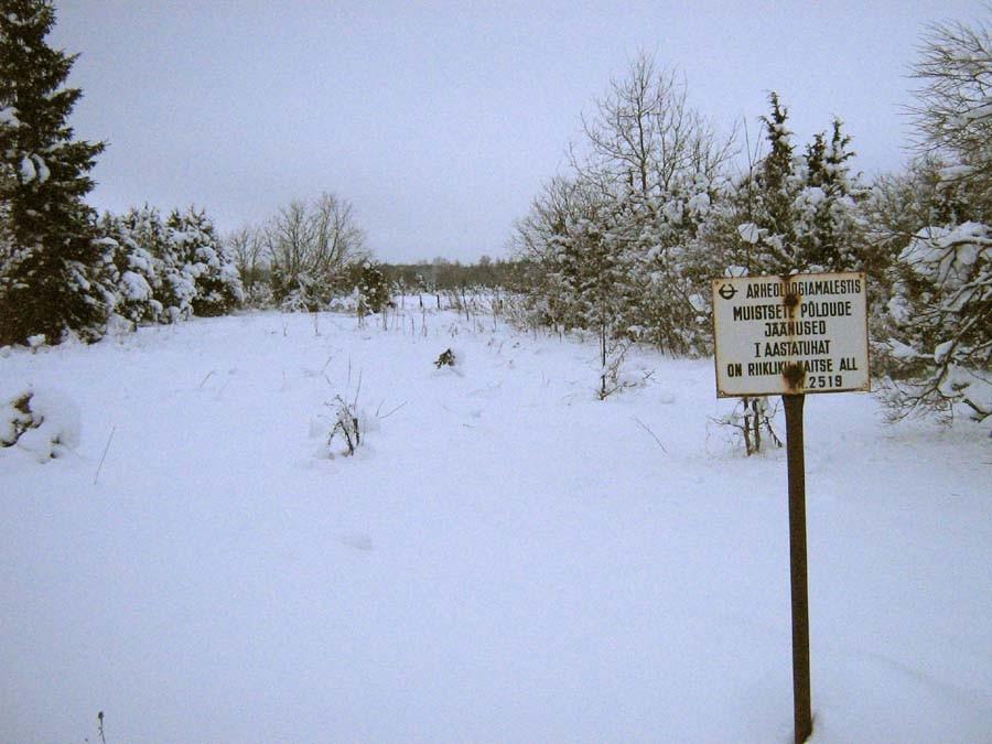 Muistsete põldude jäänused tähisega Kuressaare-Kuivastu maantee ääres. Foto: M. Koppel, 2010.