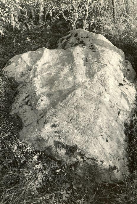 Kultusekivi - läänest. Foto: E. Väljal, 05.10.1984. (Muinsuskaitseameti arhiiv).