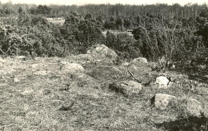Kivikalme - edelast. Foto: E. Väljal, 11.05.1982. (Muinsuskaitseameti arhiiv).