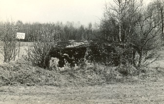 Kultusekivi reg nr 12435 (87-k) - edelast. Foto: E. Väljal, 11.05.1982. (Muinsuskaitseameti arhiiv).
