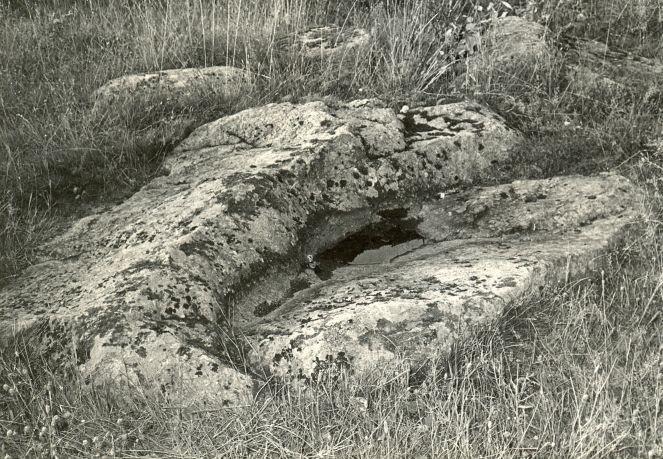 Ohvrikivi - kagust. Foto: E. Väljal, 04.10.1982. (Muinsuskaitseameti arhiiv).