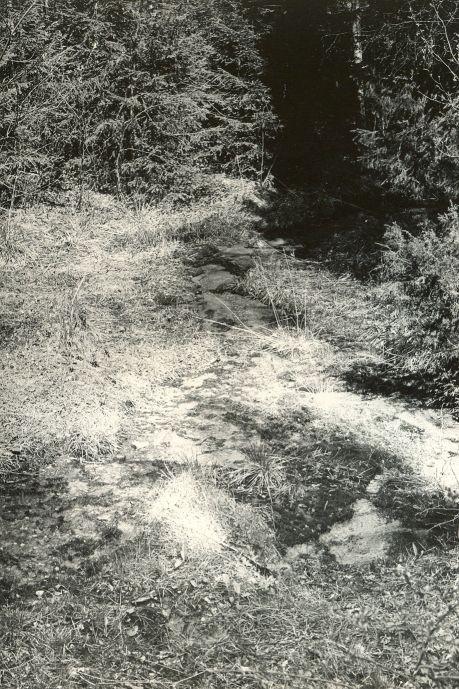 Ohvriallikas reg nr 12518 (691) - edelast. Foto: E. Väljal, 14.05.1980ndad aastad.