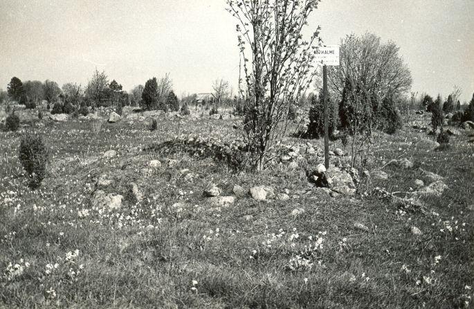 Kivikalme reg nr 12556 (188-k) - läänest. Foto: E. Väljal, 14.05.19...