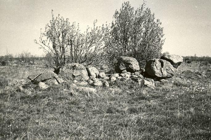 Kivikalme reg nr 12562 (194-k) - läänest. Foto: E. Väljal, 14.05.19...
