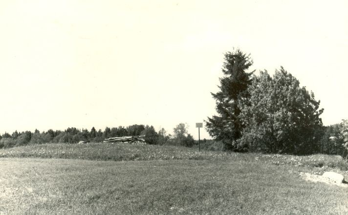 Kivikalme lõunast. Foto: H. Joonuks, 1976.