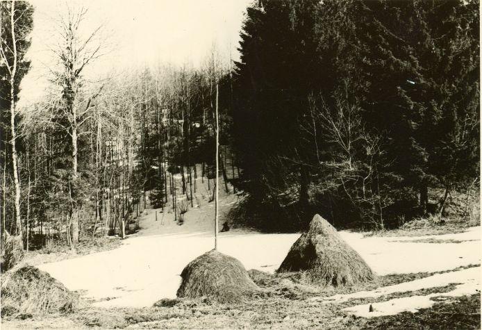 Rahaaugumägi loodest. Foto: H. Joonuks, 1979.