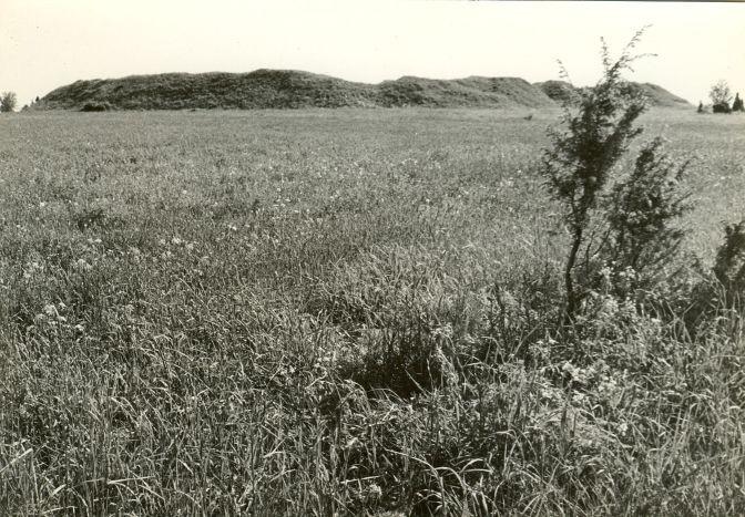 Maalinn reg nr 12504 (700). Foto: E. Väljal, 03.06.1981.