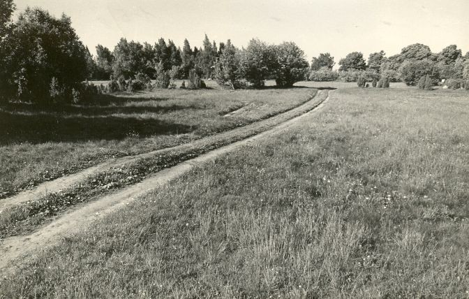 Päelda maalinn reg nr 12515 (699). Foto: E. Väljal, 03.06.1981.