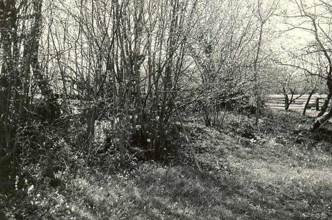 Kivikalmed reg nr 12358-12360 (19-21-k) - idast. Foto: E. Väljal, 1980ndad aastad.