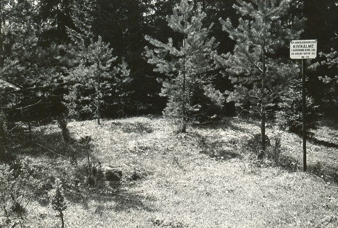 Kivikalme reg nr 12341 (50-k) - kirdest. Foto: E. Väljal, 15.05.1984.