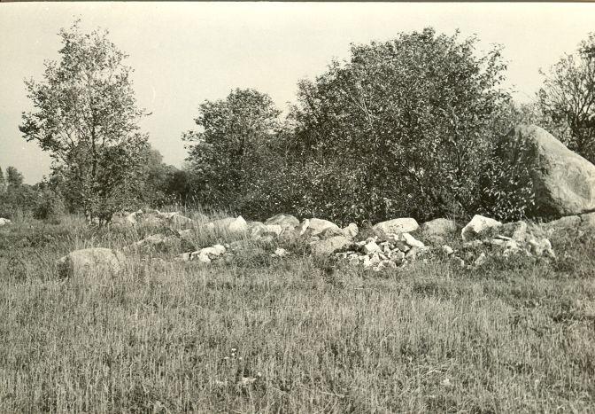 Kultusekivi lõunast. Foto: E. Väljal, 1982.